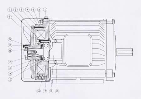 ■结构精巧:    轻薄短小的内部结构与马达